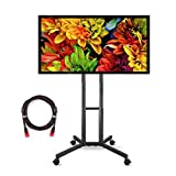 Suptek Universal TV Cart For LCD LED Plasma Panel Stand Mount With Wheels Mobile For 32 to 60 Inch (ML5073-2)