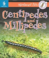 Minibeast Pets: Millipedes and Centipedes