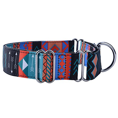 SCENEREAL Martingale Collars for Dogs Heavy Duty Large Dog Training Collar for Walking Hiking Running