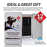 12 Art Pencils Sketch Travel Set – Artists Sketching Pencil Drawing Kit Includes 9B, 8B, 7B, 6B, 5B, 4B, 3B, 2B, B, HB, F, H -Black & Grey Precision Graphite Coloring Pencils for Adults & Kid Artists