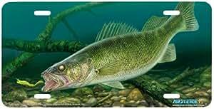 Amazon Com Eye Candy Walleye Fish Art Print License
