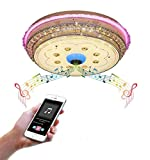 LED Ceiling Light, Bluetooth Music Ceiling Lamp with Speaker, Stepless Dimming Remote Control