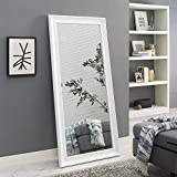 "Naomi Home Framed Mirror White/65"" x 31"""