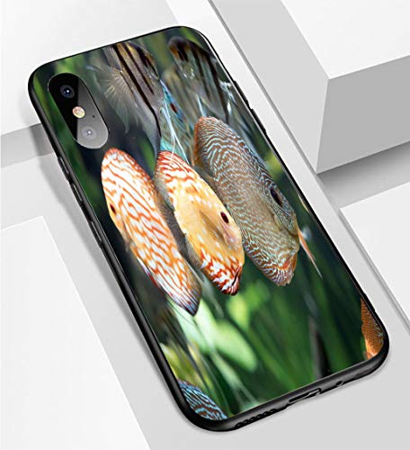 iPhone X/XS Ultra-Thin Phone case Pigeon Blood Discus Fish Symphysodon aequifasciatus Anti-Drop Anti-Slip Soft Convenient Protective Shell
