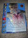 img - for New Atlas of Human Anatomy book / textbook / text book