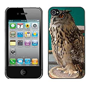 Super Stella Slim PC Hard Case Cover Skin Armor Shell Protection // M00149337 Owl Bird Predator Night Nature // Apple iPhone 4 4S 4G