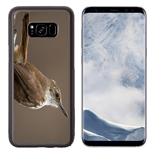 Liili Premium Samsung Galaxy S8 Plus Aluminum Backplate Bumper Snap Case Little bird caring food to the nest with a photographer con takeing a picture Photo 20795523 Simple Snap (Plus Finch Food)
