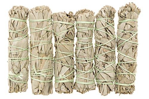 6 Pack Stick (Premium California White Sage 4 Inch Smudge Sticks - 6 Pack. Alternative Imagination)