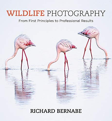 Pdf Photography Wildlife Photography: An expert guide