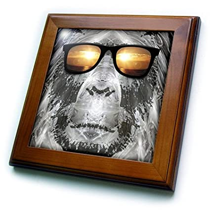 3dRose ft/_19405/_1 Bigfoot in Shades Bigfoot or Sasquatch is Pictured in Style Wearing Sunglasses-Framed Tile Artwork 8 by 8-Inch