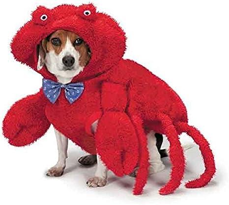 Zack & Zoey Disfraz de Cangrejo Peludo para Perros, 16 Pulgadas ...