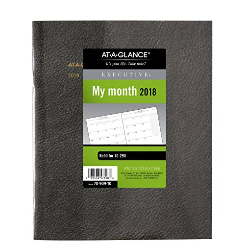 Executive Monthly Planner Padfolio - AT-A-GLANCE Monthly Planner Refill for Executive Monthly Padfolio, January 2018 - January 2019, 9