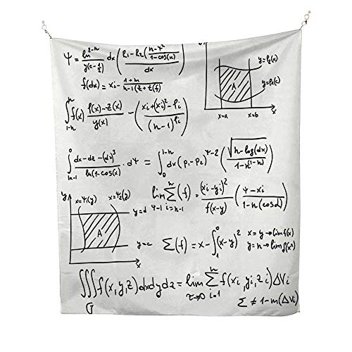 (Mathematics Classroom DecortapestryScientific Research Graphs Proof Field of Algebra Physics 40W x 60L inch Wall tapestryEggshell Black)