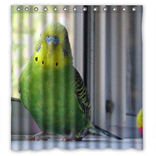"""Unique green parakeet budgie parrot Shower Curtain Measure 66""""(w)x72""""(h)"""