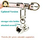CatYou 3 Sets Pet Small Bells for Collar, Pet