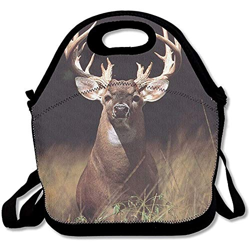 HOOAL Trophy Buck Deer with Big Rack Travel Picnic Lunch Bag Lunchboxes Outdoor Lunch Bag Tote Bag Lunch Organizer Lunch Box Fit For Women, Men & -
