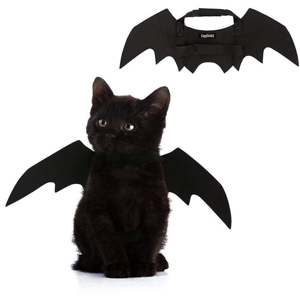 GAOS Store Halloween Pet Bat Wings Kostüm Katze Hund