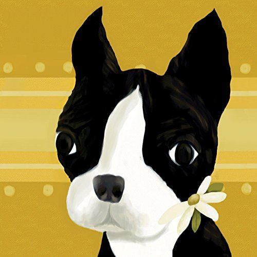 Oopsy-Daisy-Bea-The-Boston-Terrier-Stretched-Canvas-Wall-Art-by-Meghann-OHara