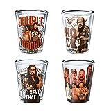 Silver Buffalo WE031SG2 WWE Daniel Bryan the Bella Twins Rock and Group Mini Glass Set, 4-Pack