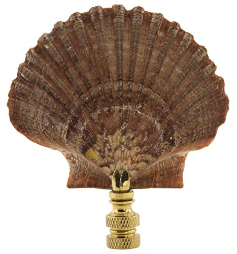 Mexican Flat Sea Shell Finial 3