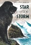 Star in the Storm, Joan Hiatt Harlow, 1416905308