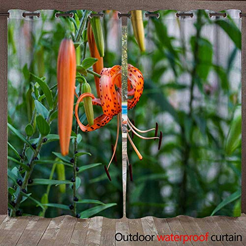 WinfreyDecor Home Patio Outdoor Curtain A Summer time Favorite The Tiger Lily W96 x L108 (Lily Tiger Drapes)