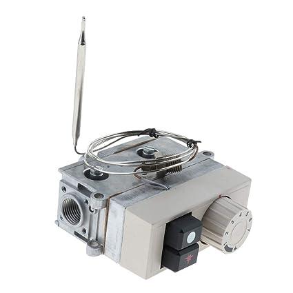 Homyl Válvula de Control Termostático Botón de Gas Agua ...