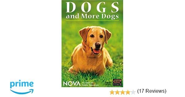 Amazon.com: NOVA: Dogs and More Dogs: ., Noel Buckner, Rob ...