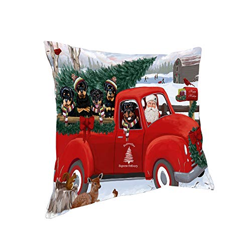 Doggie of the Day Christmas Santa Express Delivery Rottweilers Dog Family Pillow PIL76600 (14x14)