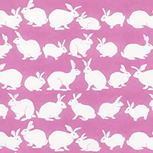 Entertaining with Caspari Continuous Gift Wrapping Paper, Rabbit Hutch, Pink, 5-Feet, 1-Roll