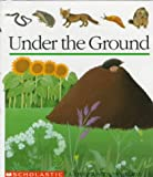 Under the Ground, Pascale De Bourgoing, Pascale De Bourgoing, Gallimard Jeunesse, 0590203029