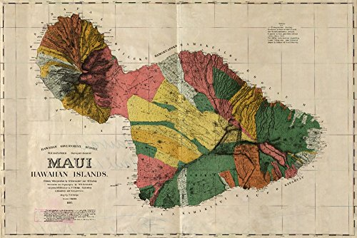 Maui, Hawaii - (1885) - Panoramic Map (24x36 SIGNED Print Master Giclee Print w/ Certificate of Authenticity - Wall Decor Travel Poster) by Lantern Press