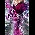 Burn (Hidden Magic Book 1)