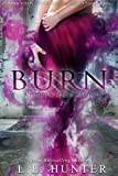 Burn (Hidden Magic Book 1)
