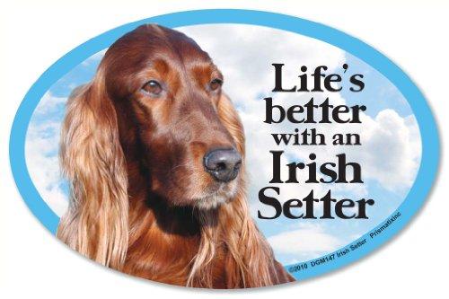 Irish Setter Oval Dog Magnet for Cars