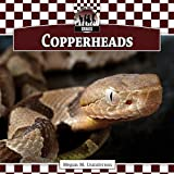 Copperheads (Checkerboard Animal Library: Snakes Set I)