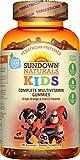 Sundown Naturals B Vitamins - Best Reviews Guide