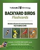 #4: Bird ID Flash Cards (Eastern & Central NA)