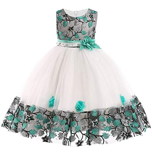 Baby Embroidered Formal Princess Dress for Girl Elegant Birthday Party Dress Girl Dress Baby Girl Christmas 2-14 Years,As Picture1,7