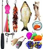 PETOY Cat Toys Set - Cat Retractable Teaser Wand - Catnip Fish - Interactive Cat Feather Toy - Mylar Crincle Balls - Two Cotton Mice - Two Fluffy Mouse