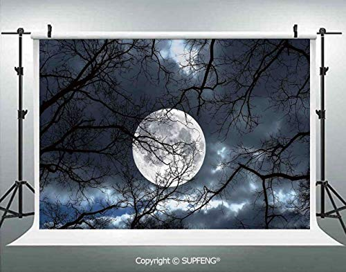 Photography Backdrops Full Moon at Night in The Forest Winter Time Mystical Dramatic Days Luna Photo 3D Backdrops for Photography Backdrop Photo Background Studio Prop -