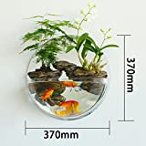 Wall flower pots home accessories living room decoration plant bonsai-C