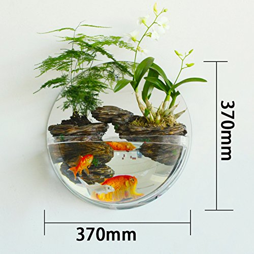 Wall flower pots home accessories living room decoration plant bonsai-C by WYMHP