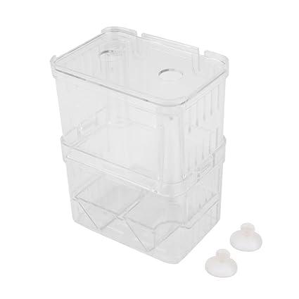 LEORX Peces de acuario incubadora flotante criadero criador Case de cría (Transparent)