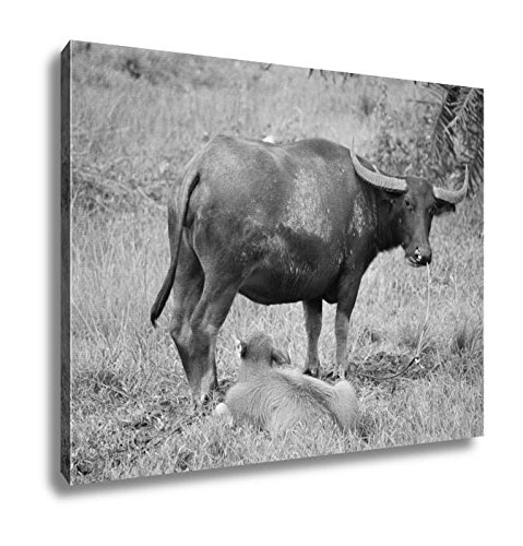 Ashley Canvas Thai Buffalo Walk Over The Field Go Back Home With Sunset Life Machine Of, Wall Art Home Decor, Ready to Hang, Black/White, 16x20, AG6343405 by Ashley Canvas