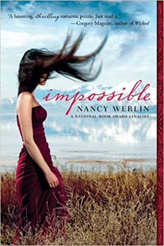 Image result for nancy werlin impossible