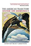 The American Trajectory: Divine or Demonic?