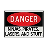 """CafePress - Pirates, Lasers, Ninjas, And - Rectangle Magnet, 2""""x3"""" Refrigerator Magnet"""