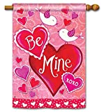 Cheap BreezeArt® Valentines Day Be Mine Birds House Size Flag 91122