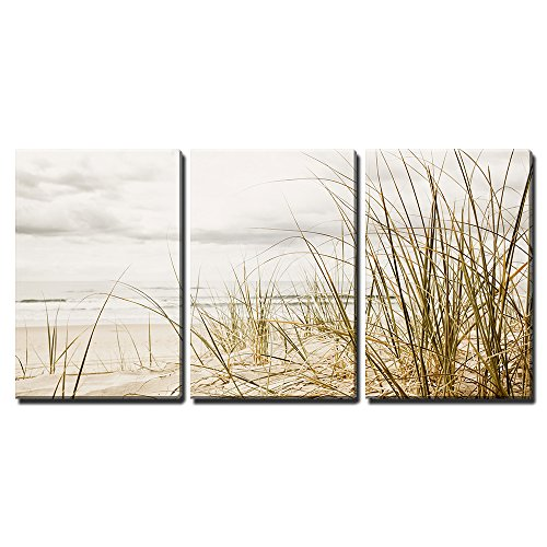 wall26 – 3 Piece Canvas Wall Art – Close up of a Tall Grass on a Beach During Stormy Season – Modern Home Decor Stretched and Framed Ready to Hang – 16 x24 x3 Panels